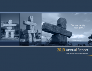 Cover of the 2013 annual report