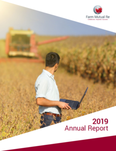 Cover of the 2019 annual report